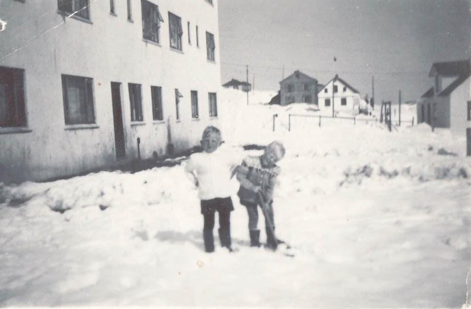 Abbi og Viðir